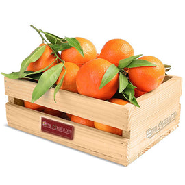 Orange Orange Fruit Basket