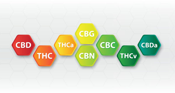 CBDA (Cannabidiolic Acid) Guide | Secret Nature
