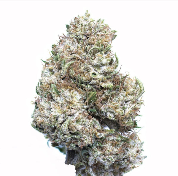 CBG Flower - 15.4% CBG, 15.9% Total Cannabinoids, Nutty, Earthy, Haze, Sativa, Focus, Indoor Grown - Secret Nature