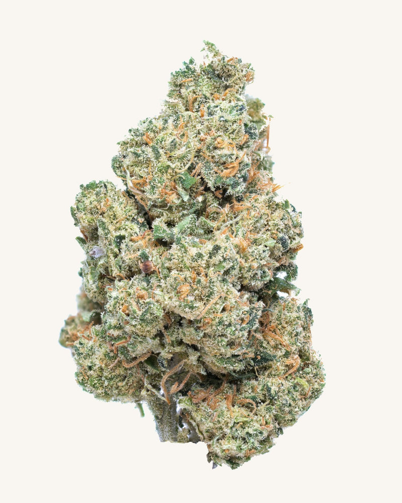 Frosted Kush - Secret Nature