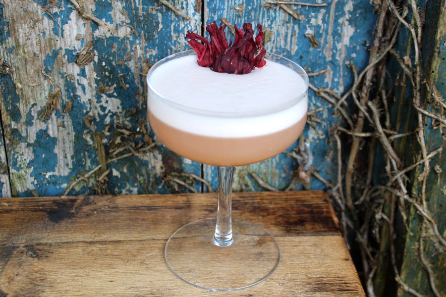 How to make a Vegan Gin Sour