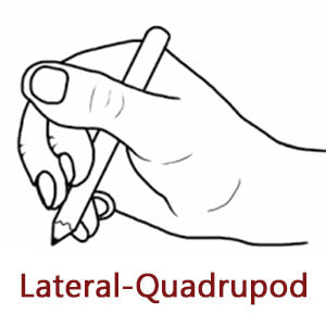 lateral quadrupod pencil grasp