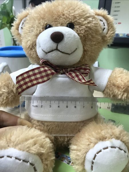 Teddy Bear w/Sublimation Ready Shirt