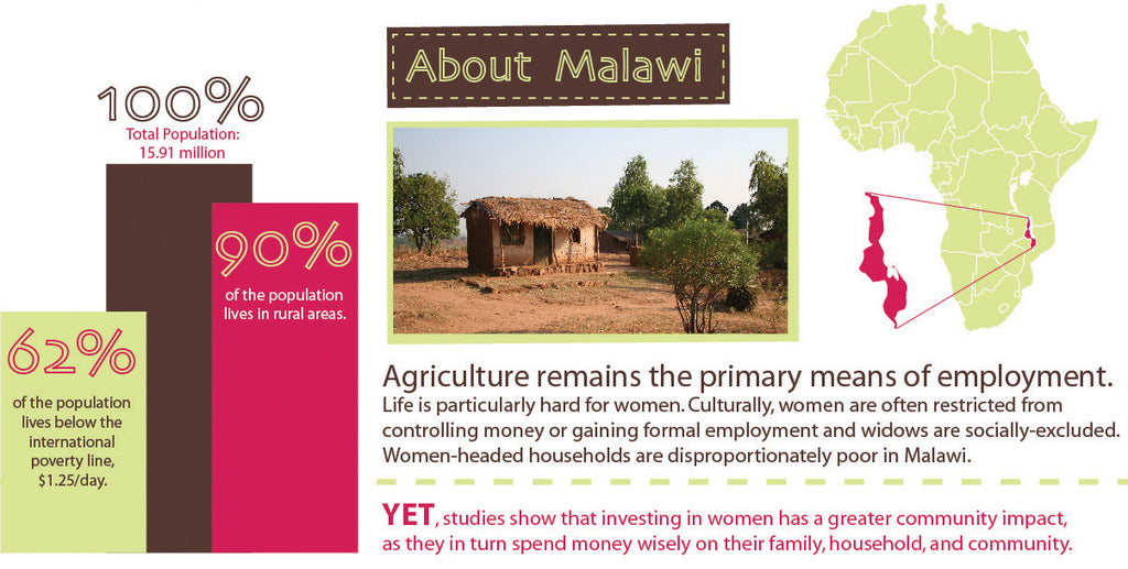 Infographic About Malawi