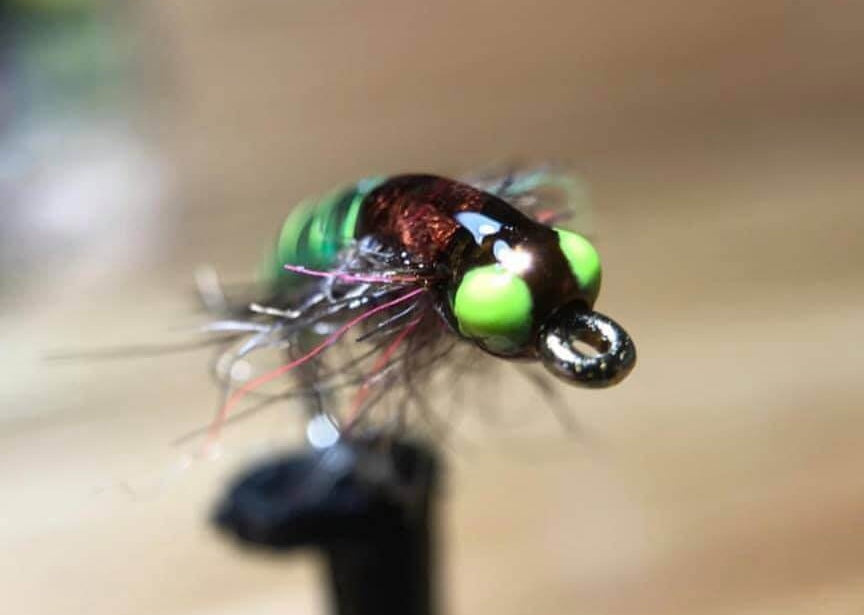 Highly Effective Fly Fishing Tactics – Euro Nymphing