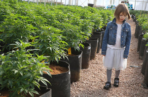 Meet the 5 year old girl who changed the image of cannabis in the US