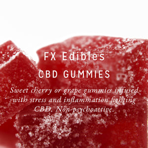 FX Edibles 200mg CBD Gummies
