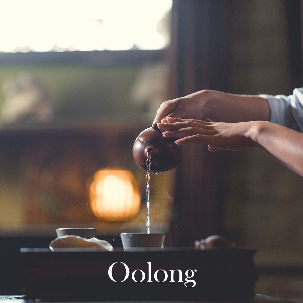 Oolong Tea Tasting: 'The Black Dragon'