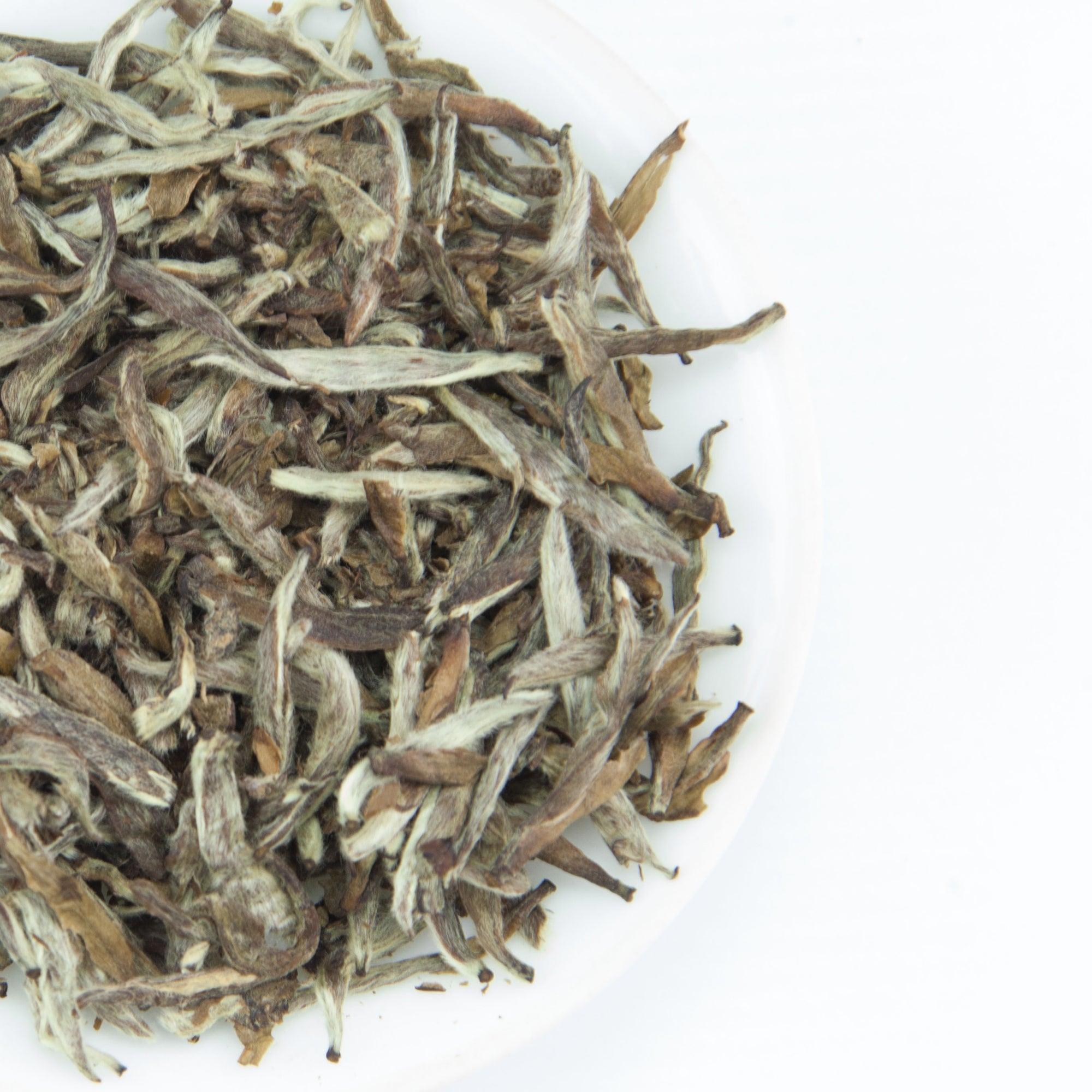 2012 Aged Silver Needle White Tea