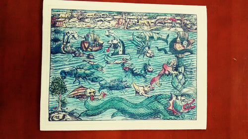 Nautical & Seafaring Prints - 8.5