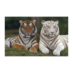 Tigers 5D DIY Partial Drill Round Drill Diamond Painting
