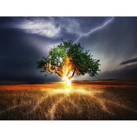 Tree Struck by Lightning 5D DIY Full Drill Round Drill Diamond Painting(45x35cm)