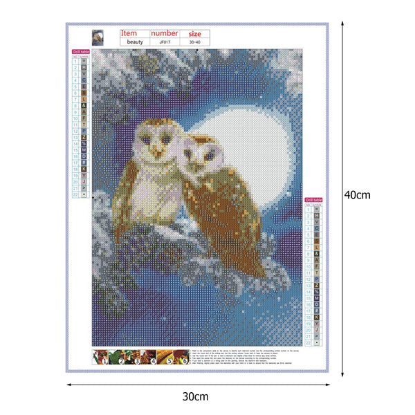 Owls 5D DIY Full Drill Square Drill Diamond Painting