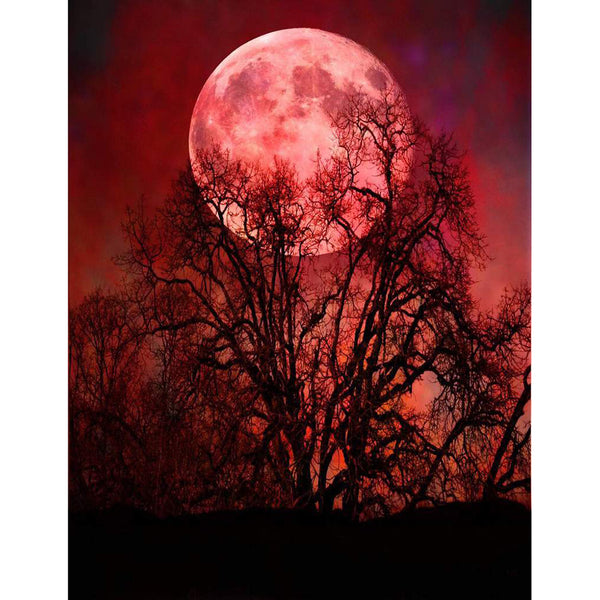 Moon Scenery 5D DIY Full Drill Round Drill Diamond Painting