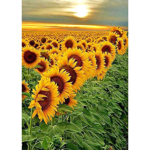 Sunflowers Field 5D DIY Full Drill Round Drill Diamond Painting