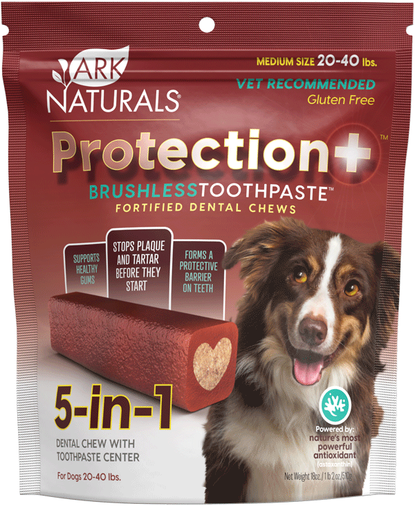 Medium Protection+ Brushless Toothpaste, for dogs 20 to 40 lbs.