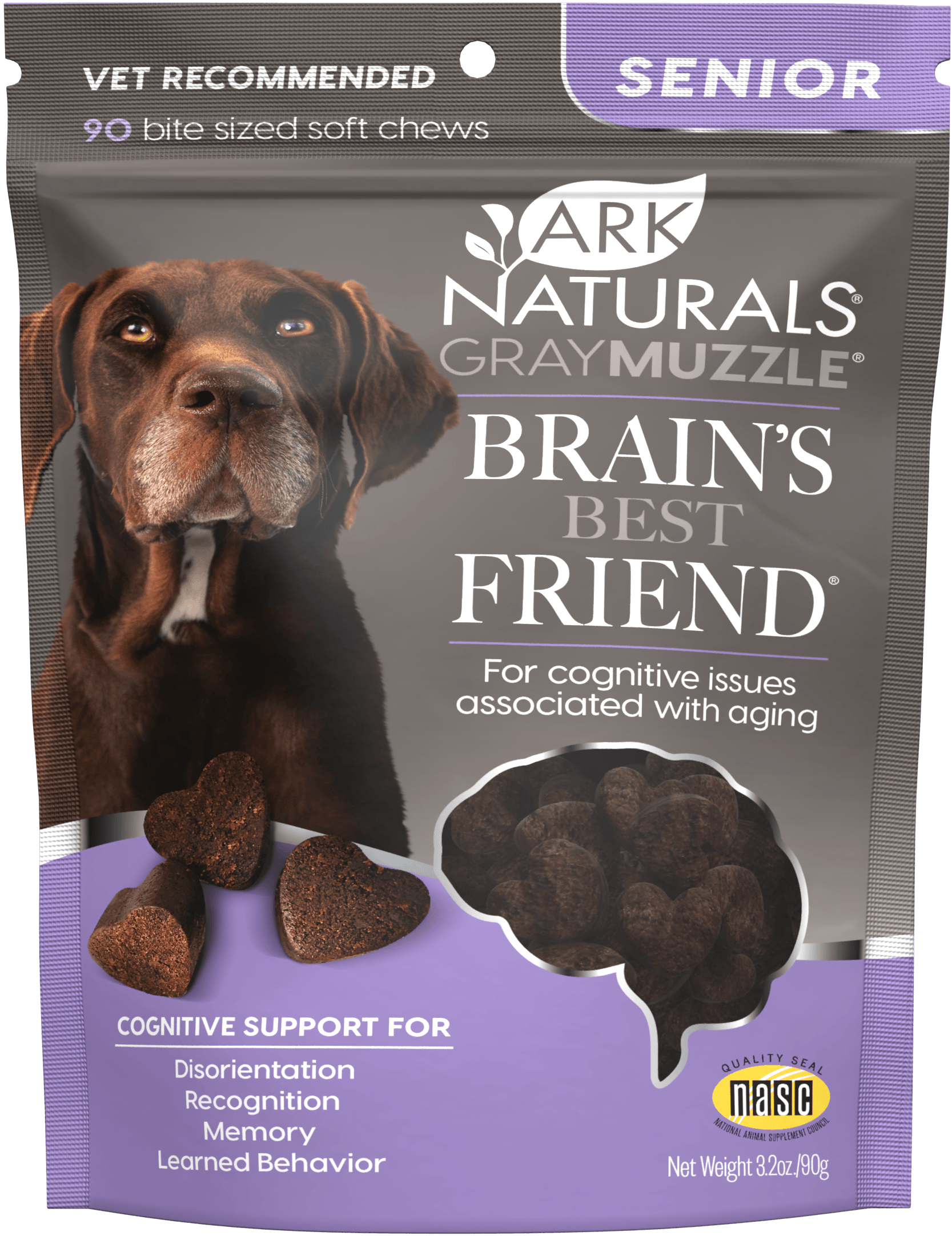 Gray Muzzle Brain's Best Friend!