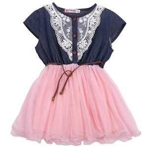Princess Baby Girl's Lace Belt Tulle Dress