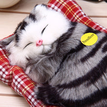 Load image into Gallery viewer, Lovely Sleeping Cats for baby