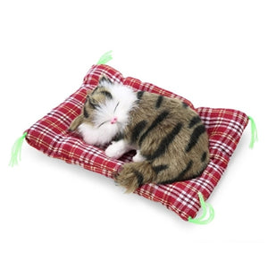 Lovely Sleeping Cats for baby