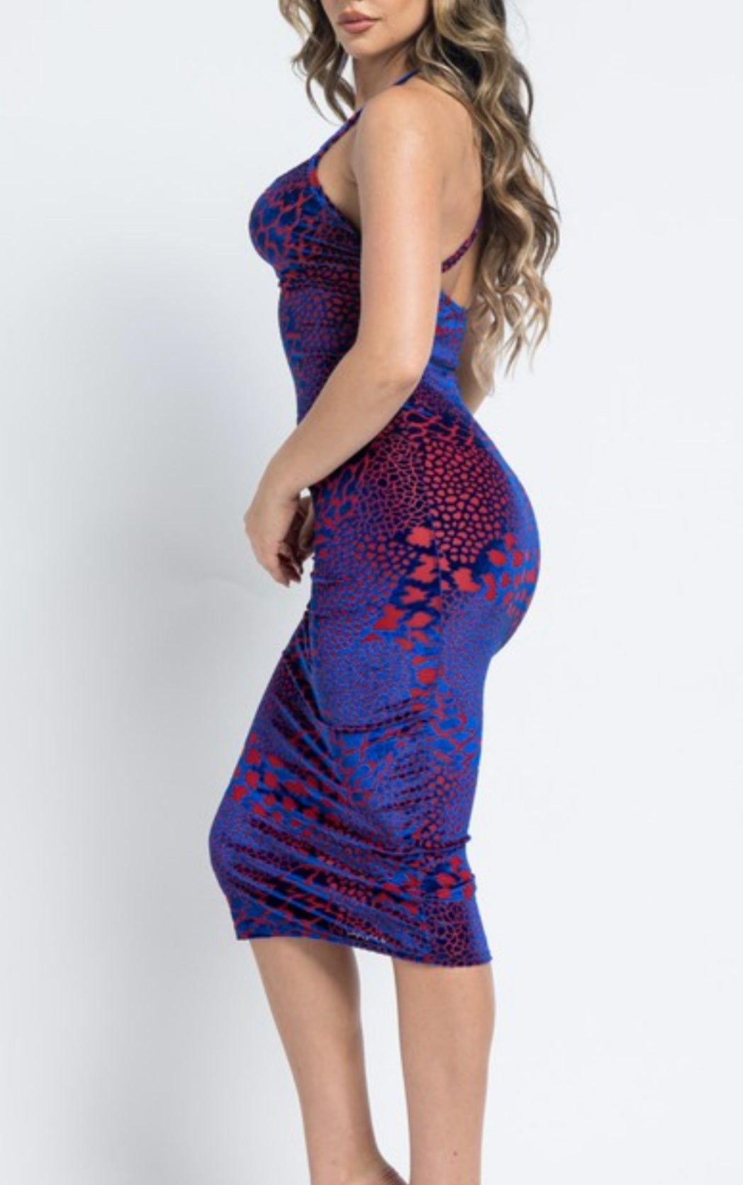 The Crackle Fitted Dress