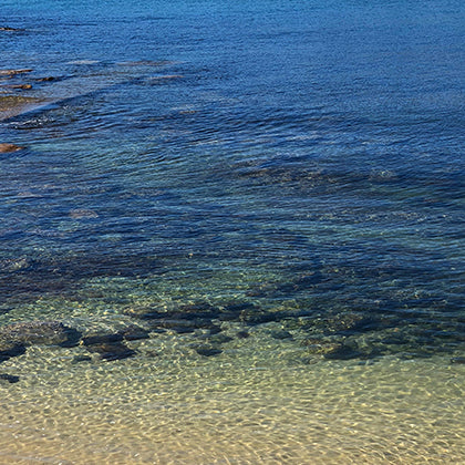 Crystal Clear Waters of Balmoral Mosman
