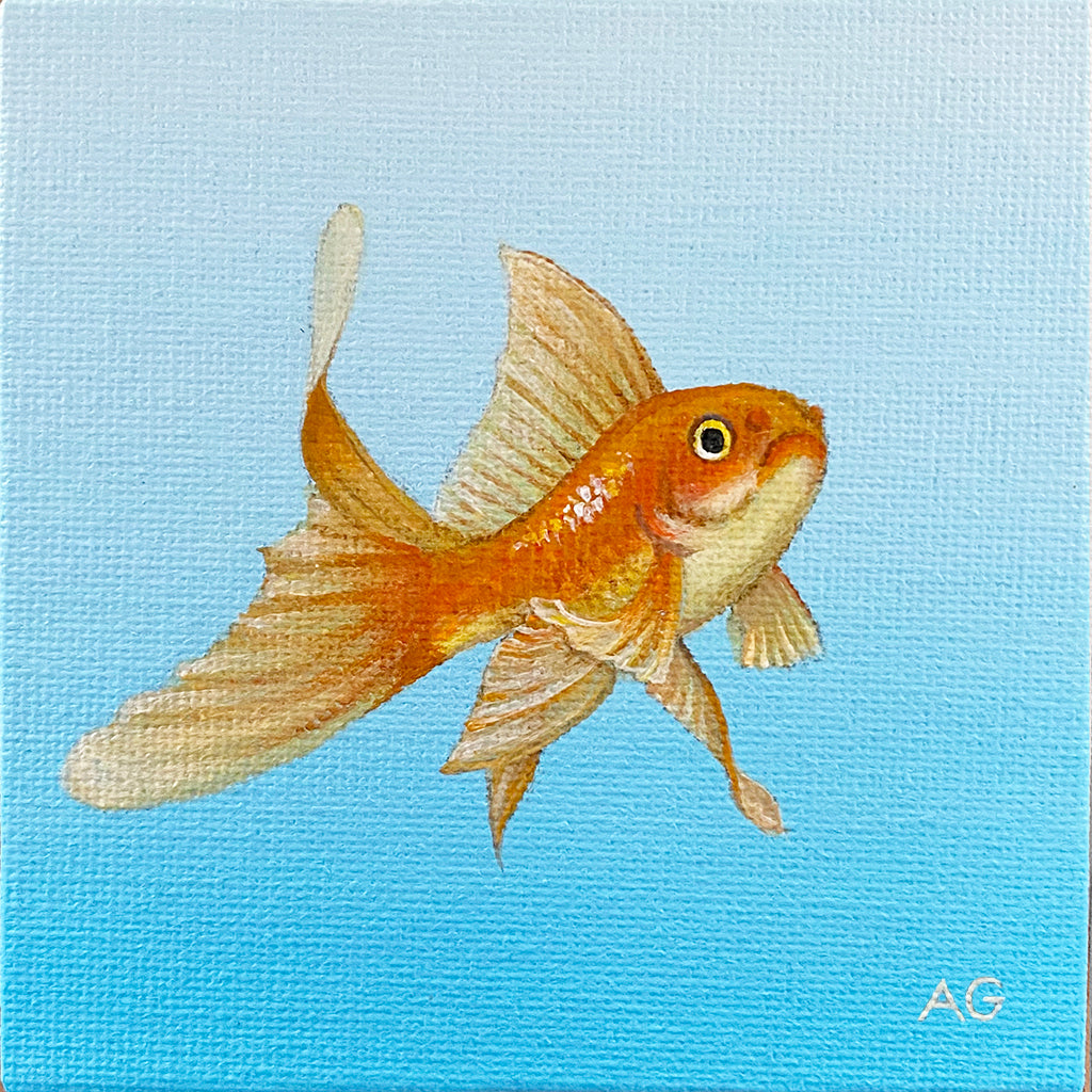 Fantail Goldfish miniature painting acrylic on 10 x 10cm canvas by Amanda Gosse