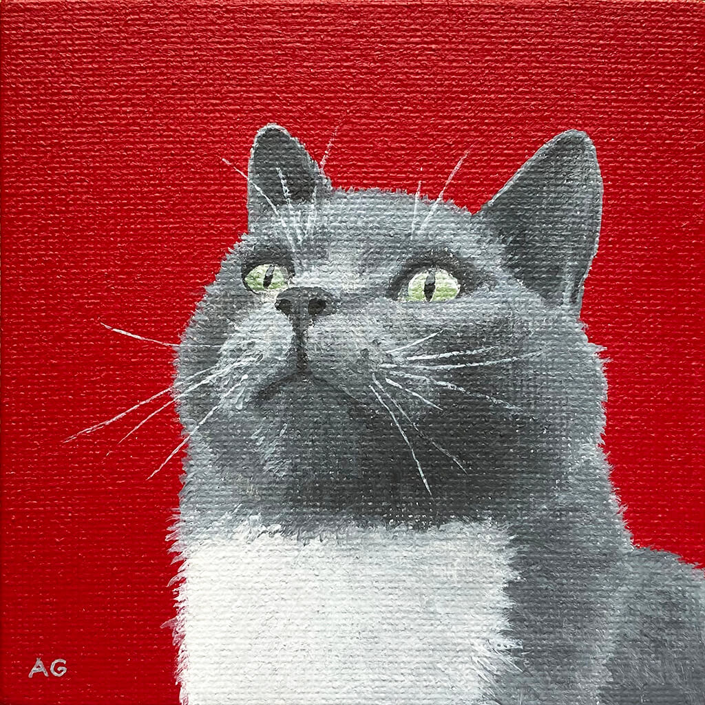 Miniature acrylic on canvas painting of a grey and white cat by Amanda Gosse