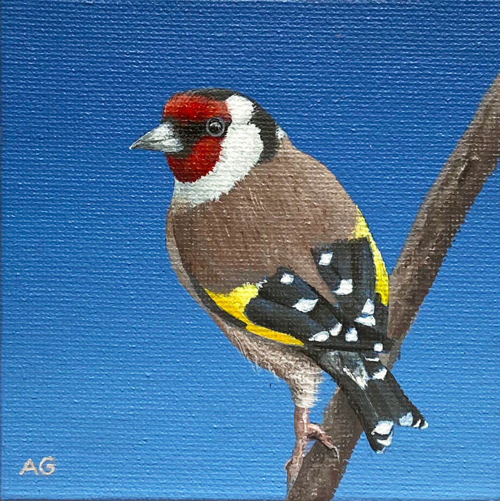 Miniature acrylic on canvas artwork of a goldfinch bird by Amanda Gosse