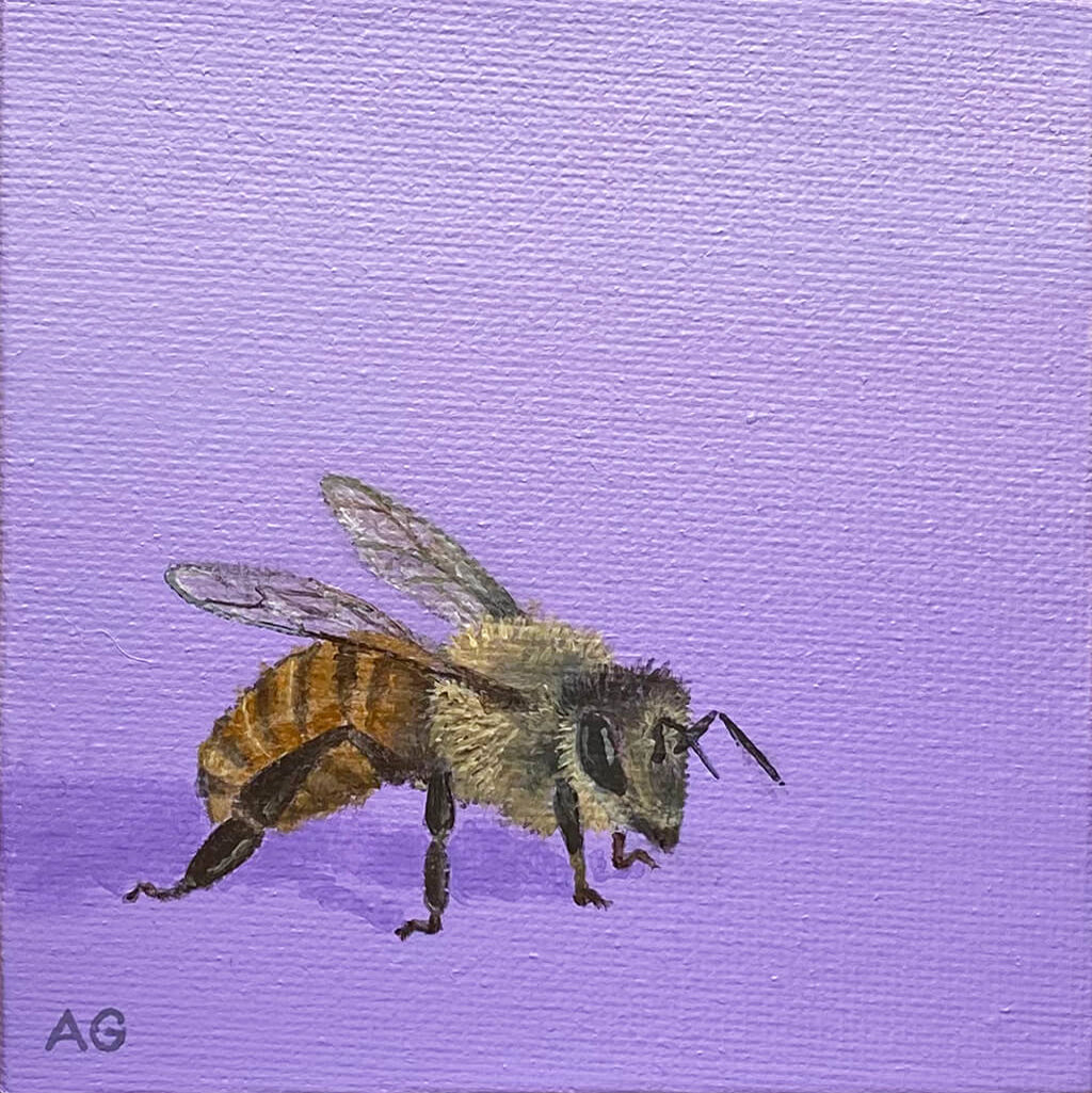 A small painting of a honey bee on a violet lavender purple background painted by artist Amanda Gosse