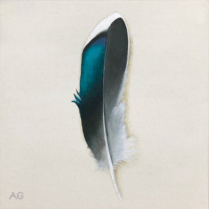 Original acrylic painting of a metallic duck feather by Amanda Gosse
