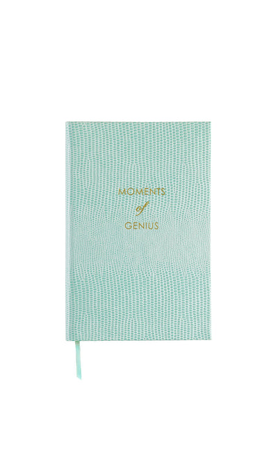 Moments of Genius Pocket Notebook