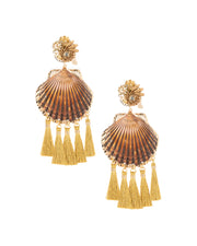 Rose Coquille Shell Earrings