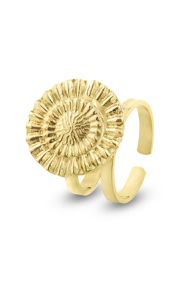 Amare Gold Double Ring