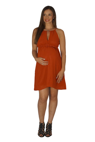 The Upper Rust Maternity Dress
