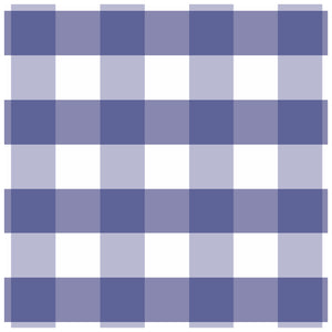 Gingham Charger (ENLARGED TO SHOW DETAIL) - (SQUARE)