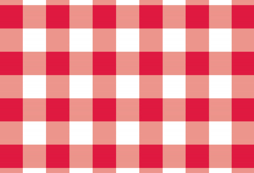 Gingham Red - Placemat
