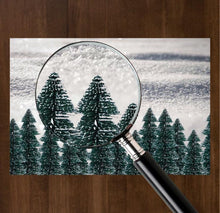 Load image into Gallery viewer, White Christmas - Placemat