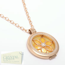 Load image into Gallery viewer, Stainless Steel 316L Yellow Gold Plated Interchangeable My Coin Holder Necklace Flower Shell Disc Set