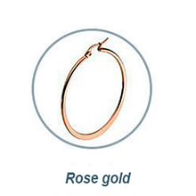 Load image into Gallery viewer, Rose Gold Plated Stainless Steel Loop Earrings Hypoallergenic Different Sizes