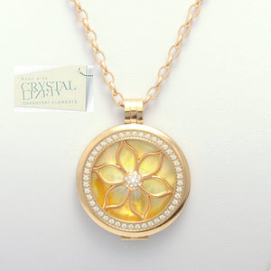 Stainless Steel 316L Yellow Gold Plated Interchangeable My Coin Holder Necklace Flower Shell Disc Set
