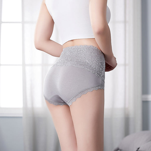 F&R Soft Lace High Waist Brief Panty