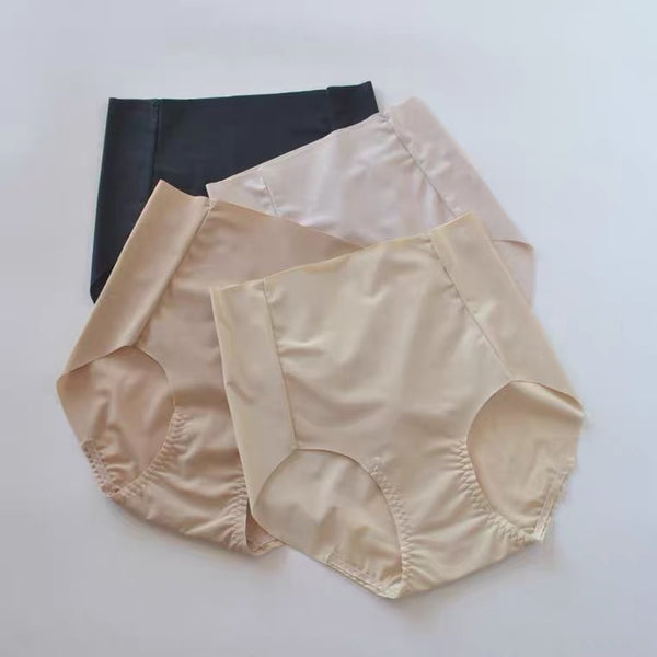 F&R Silky Invisible High Waist Brief Wholesale