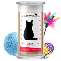 I Love My Chartreux | Must Love Cats® Candle-Must Love Cats® Candle-The Official Website of Jewelry Candles - Find Jewelry In Candles!