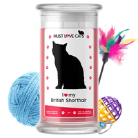 I Love My British Shorthair | Must Love Cats® Candle-Must Love Cats® Candle-The Official Website of Jewelry Candles - Find Jewelry In Candles!