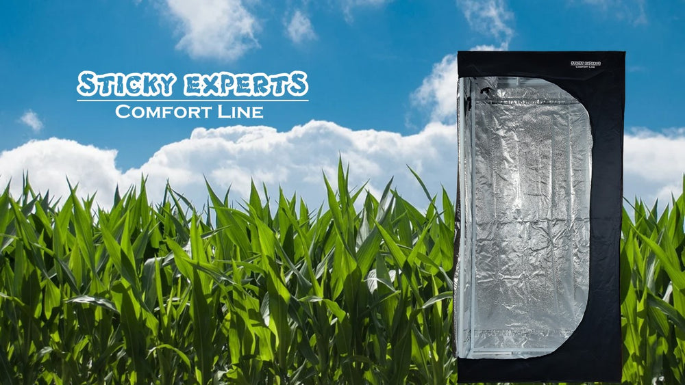 Sticky Experts - Comfort Line - 100*50*200cm