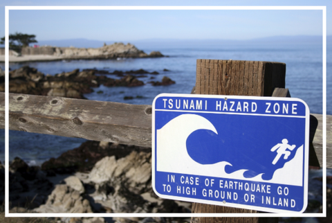 CERV Tsunami Preparedness Disaster Sign Ocean Beach
