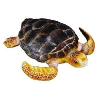 Collecta Loggerhead turtle (M)