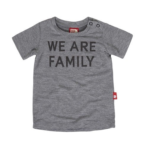 we-are-family-baby-tee-in-grey
