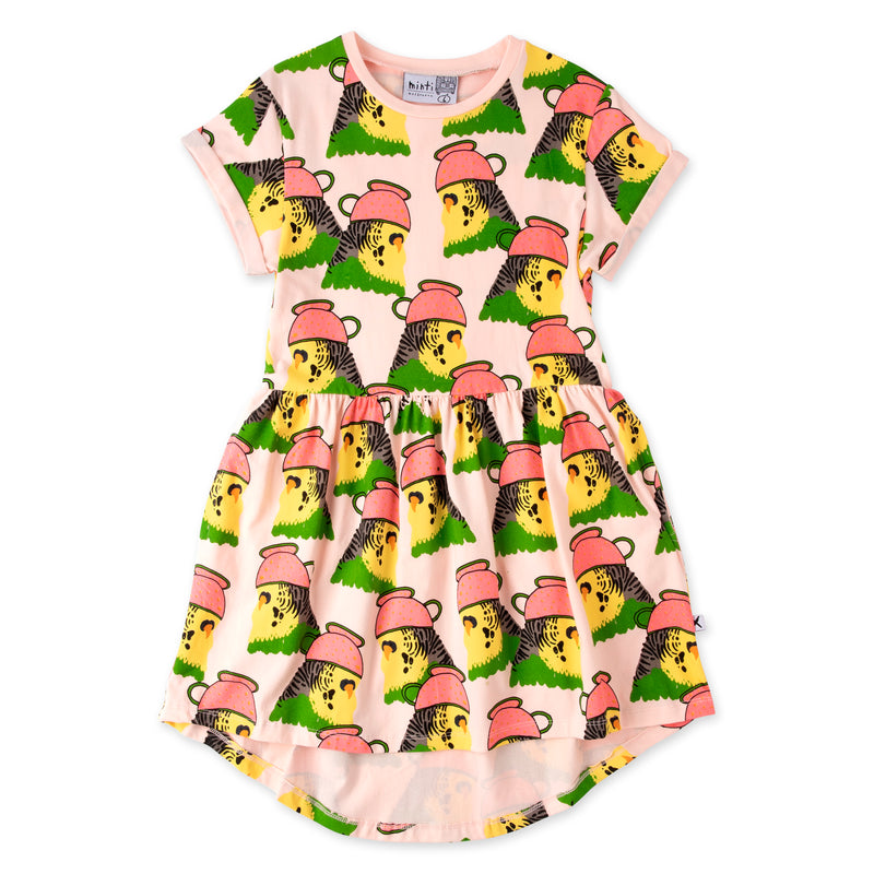 Whimsy Budgies Dress Ballet in Pink